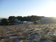 Outbuildings in Winter