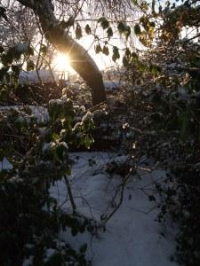 december-snow-76